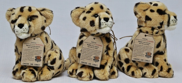 Cheetah, Soft Toy
