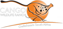 Cango Wildlife Ranch and Conservation Centre - Oudtshoorn